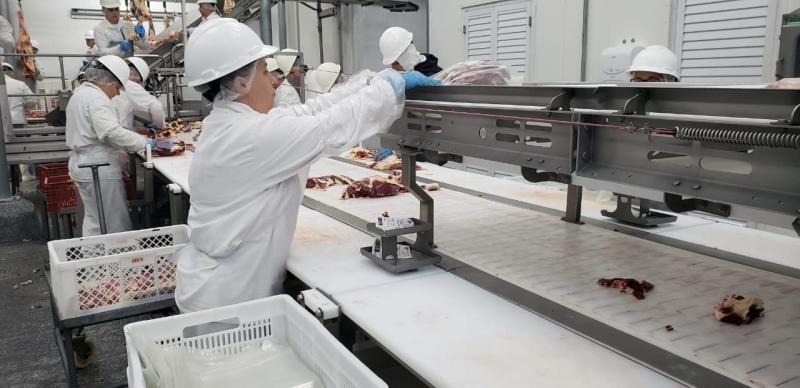 Foram interditadas máquinas que ofereciam grave risco aos trabalhadores da planta