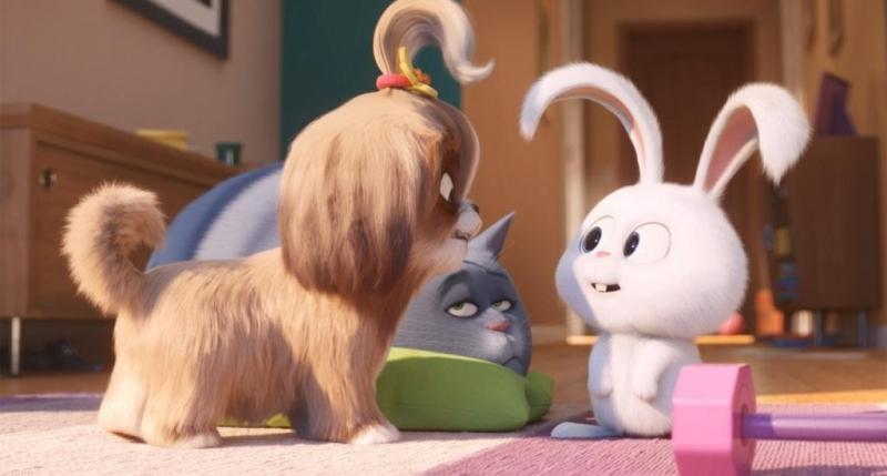 Cultura - 'Pets - a vida secreta dos bichos 2' retoma a história do cão Max e seus amigos