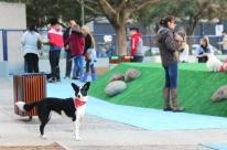Vereadores de Porto Alegre aprovam inclusão de cachorródromos e parklets no mobiliário urbano