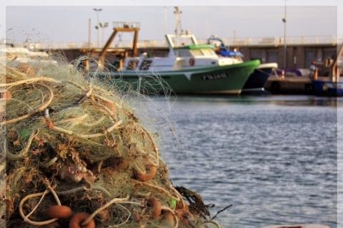 Economia marítima em alta na economia brasileira