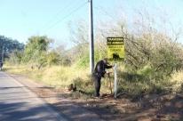Campanha visa evitar atropelamento de animais silvestres