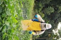 Regra nova reduz lista de agroquímicos extremamente tóxicos