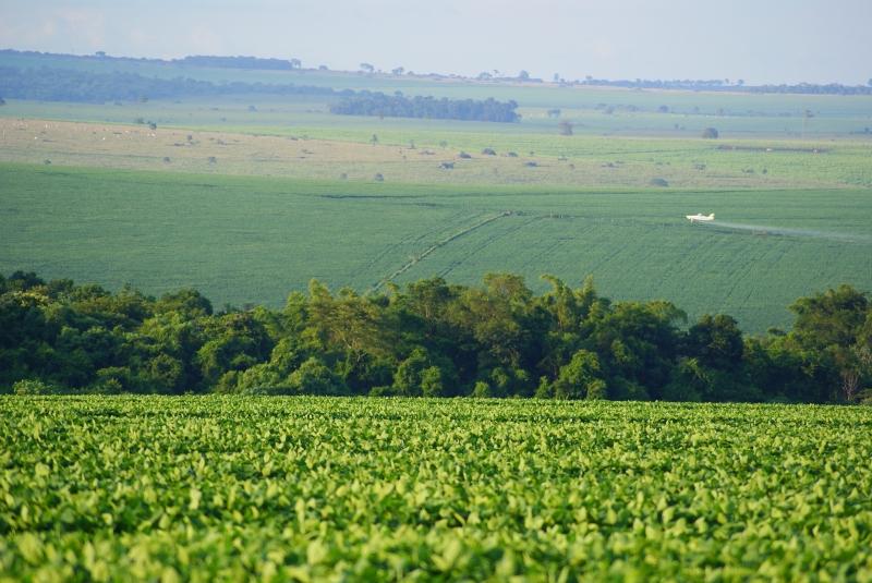 """Na justificativa apresentada pelo governo o argumento é que """"o controle dos agrotóxicos está regrado em âmbito federal através da Lei Federal nº 7.082/89"""""""