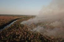 Queimadas na Amazônia mobilizam celebridades, líderes de Estado e população