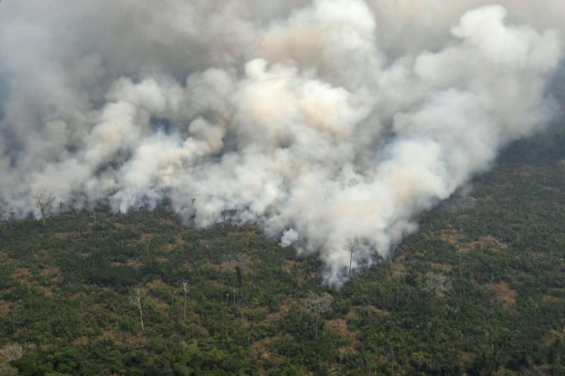Mourão, apesar dos índices, fala em 'tendência de queda' do desmatamento no bioma
