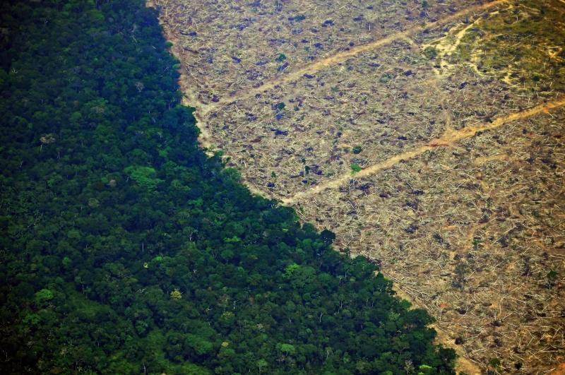 Presidente citou bloqueio de bens de pessoas ligadas a atividades de desmatamento