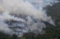 Países da América do Sul se mobilizam contra incêndios florestais