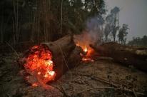 Número de queimadas na Amazônia no mês de outubro é o menor desde 1998