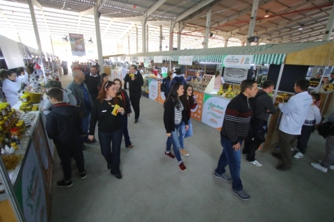 Fetag-RS analisa decreto estadual e pode pedir liberação mais ampla para vendas na Expointer