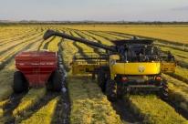 Rio Grande do Sul deve ter a menor área com arroz em 10 anos