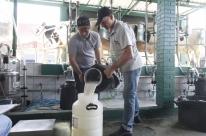 Número de produtores de leite cai em comparação com 2018