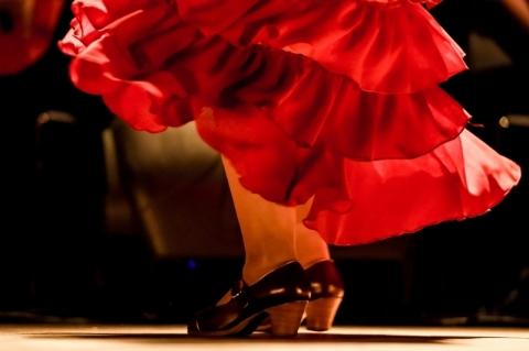 De corpo e alma flamenca