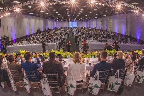 Vinhos gaúchos dominam seleção representativa da safra 2019; veja a lista