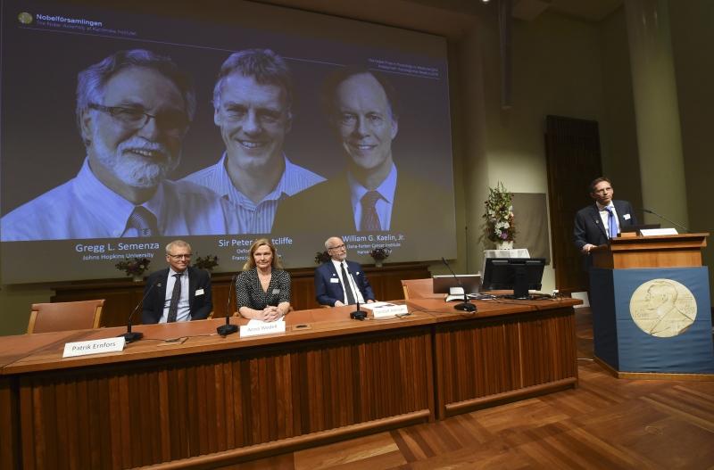 Ganhadores do Nobel de Medicina deste ano foram anunciados nesta segunda-feira na Suécia