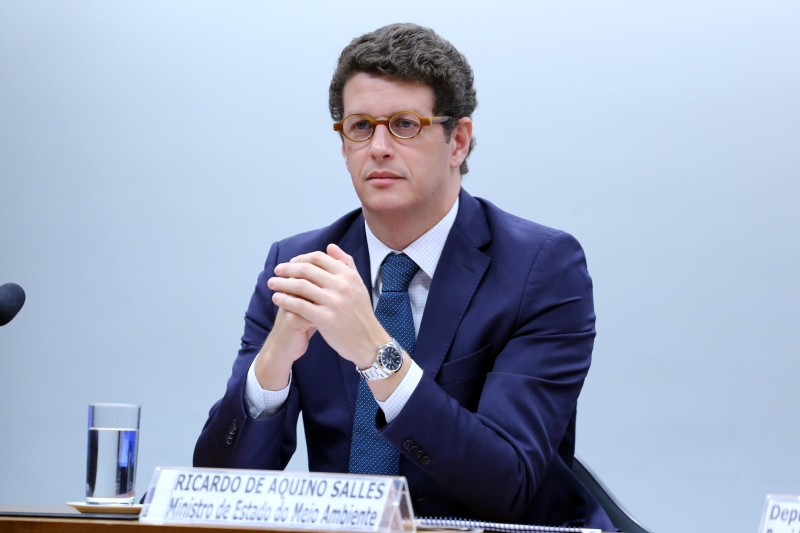 O pedido foi feito pelo ministro do Meio Ambiente, Ricardo Salles