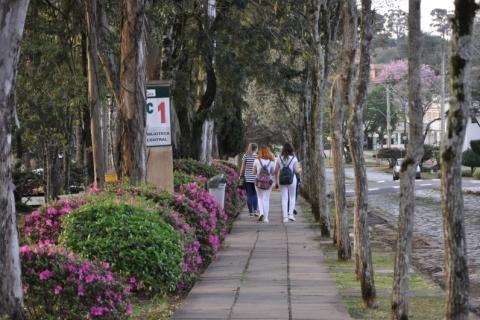 UPF está entre as melhores universidades privadas
