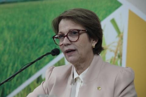 Arroz encareceu no mundo todo, não só no Brasil, diz Tereza Cristina