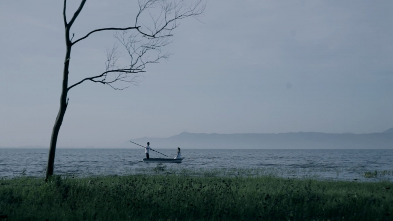 Mostra 'Travessia por terra, água e ar' é resultado de uma expedição de cinco anos pelo interior de Osório
