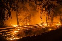 Incêndios florestais forçam 180 mil moradores a deixar casas na Califórnia