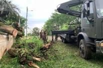 Mais de 214 mil permanecem sem energia elétrica no Rio Grande do Sul após temporais