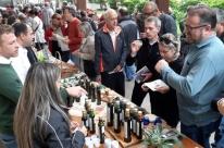 Consumidores poderão degustar e comprar azeite gaúcho na Feira do Azeite Novo