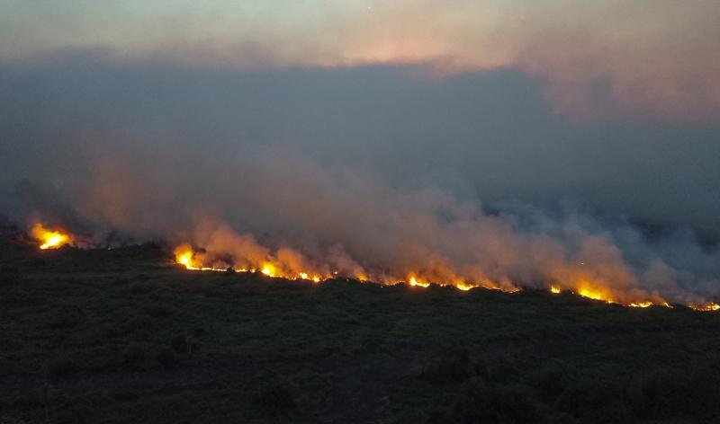 Bioma registra maior número desde 1998, quando o Inpe começou a monitorar queimadas