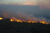 Incêndios levam Mato Grosso do Sul a decretar situação de emergência