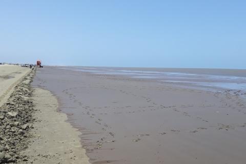 Nova vistoria mostra que lama reduziu na praia do Cassino