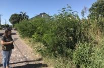 Prefeitura mapeia cerca de 4 mil terrenos baldios na cidade