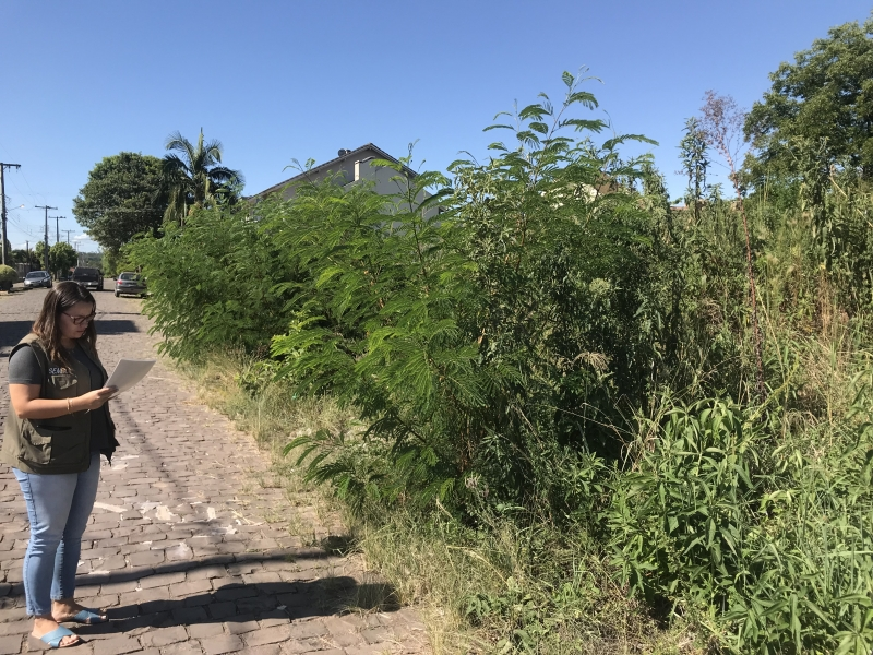 Lotes com manutenção irregular, como mato alto ou lixo a céu aberto, estão no radar da fiscalização