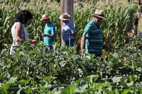 Puxado pelo agronegócio, PIB do Rio Grande do Sul cresce 2,0% em 2019