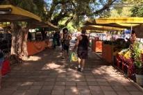 Produtores de feira ecológica de Porto Alegre farão tele-entrega