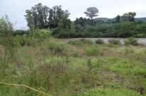 Pesquisa avalia a vegetação às margens do rio Forqueta