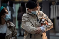 China retira cachorros de lista de animais para consumo