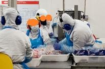 MPT determina afastamento imediato dos 989 trabalhadores da JBS de Três Passos