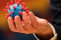 Estudo sugere que novo coronavírus não consegue contaminar óvulos