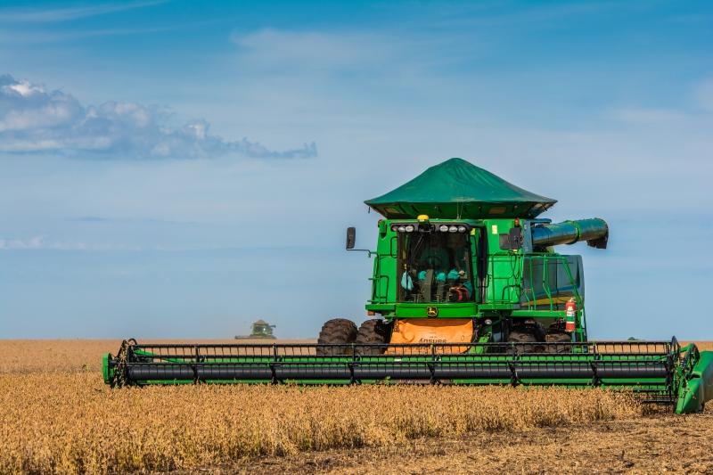 Contribuição do Brasil para o abastecimento mundial deverá aumentar mais nos próximos anos