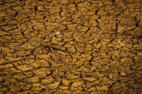 51 municípios gaúchos já estão em emergência pela falta de chuva