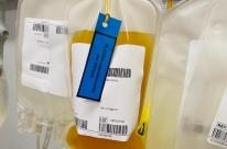Primeiro mês da doação de plasma habilita 38 pessoas em Caxias do Sul