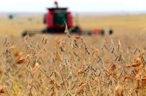 Parte dos produtores não consegue aproveitar alta nas cotações das commodities agrícolas