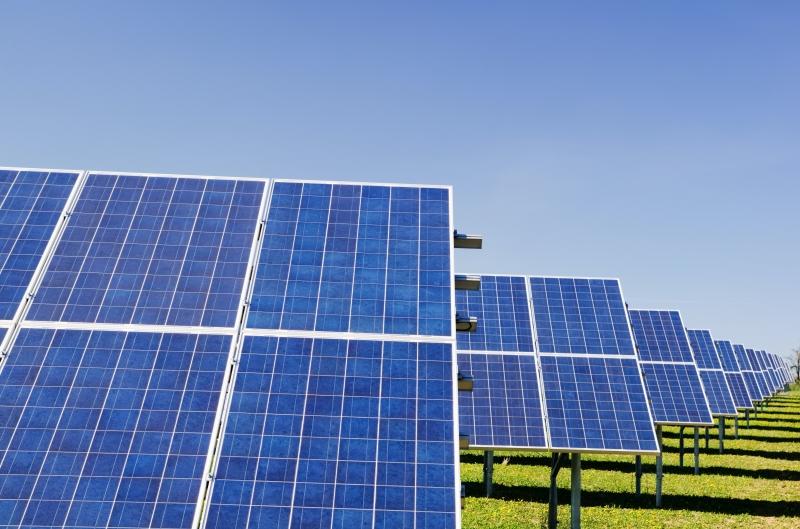 Absolar vê sinergia importante entre o agronegócio e a solar fotovoltaica, com diversos uso no campo