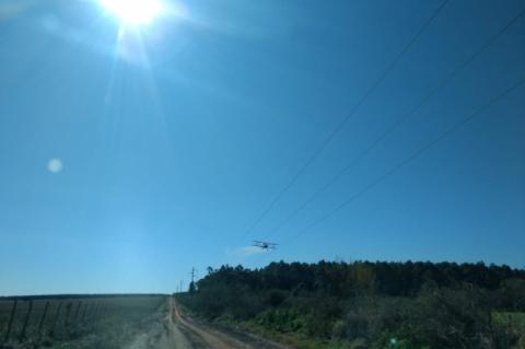 Senasa realiza operações aérea e terrestre contra nuvem de gafanhotos na Argentina
