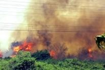 Governo determina retomada de ação de brigadistas em combate a incêndios