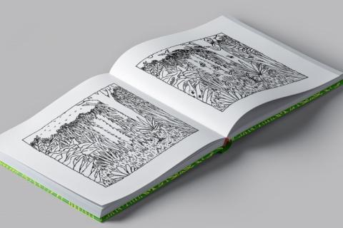 Desenhista e ilustrador pelotense lança livro 'Brasil'