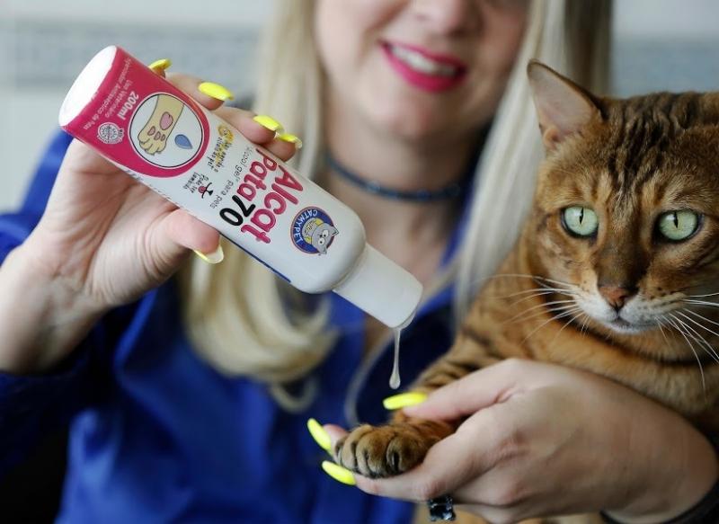 Alcat, produto da CatMyPet, não agride os animais