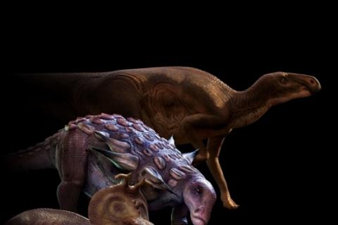 Periódico britânico publica estudo da UFSM sobre dinossauros