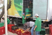 Com repasse de 82,5 toneladas de hortifrútis, Banco de Alimentos da Ceasa registra recorde de doações