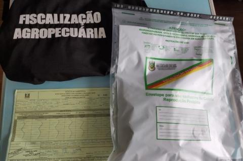 RS: novos casos de sementes desconhecidas enviadas do exterior são registrados