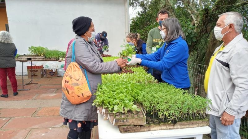 Ação acontece no dia 26 de setembro e quer estimular a formação de hortas caseiras