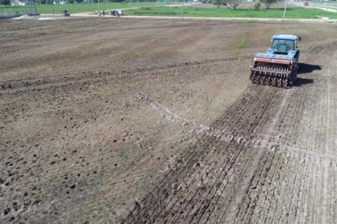 Plantio da área destinada à Abertura Oficial da Colheita do Arroz é iniciado